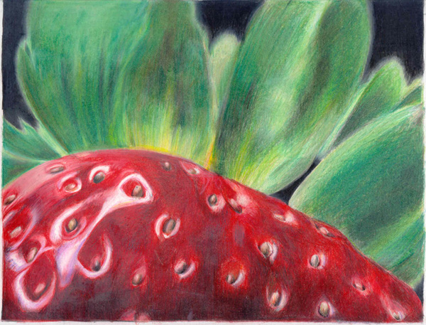 Close up drawing of a strawberry