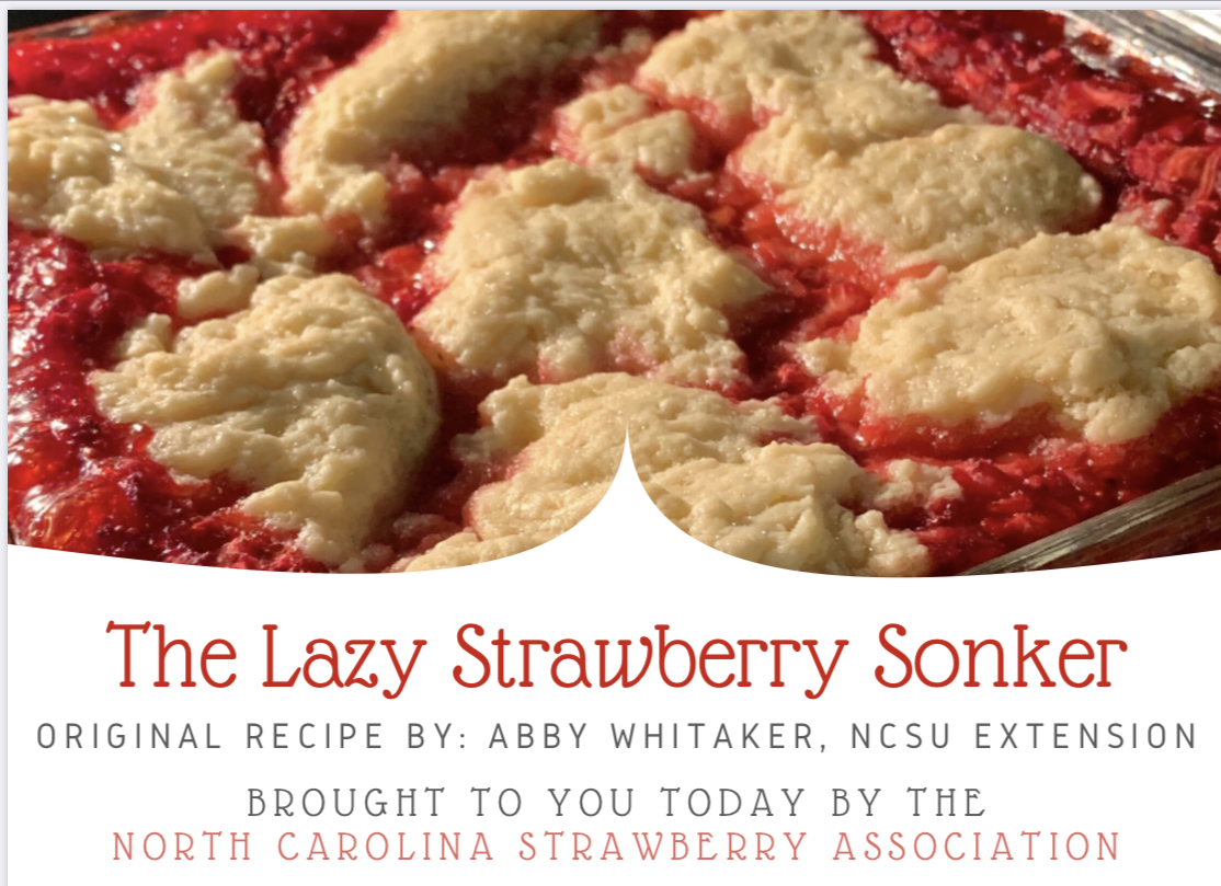 Lazy Strawberry Sonker